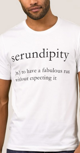 Serundipity Men's Shirt