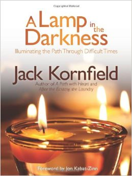 A Lamp in the Darkness : Illuminating the Path Through Difficult Times<br />