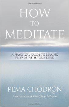 How to Meditate : A Practical Guide to Making Friends with Your Mind<br />