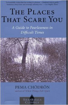 The Places that Scare You : A Guide to Fearlessness in Difficult Times<br />